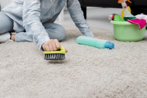 Ashburn-Carpet-Cleaning-1